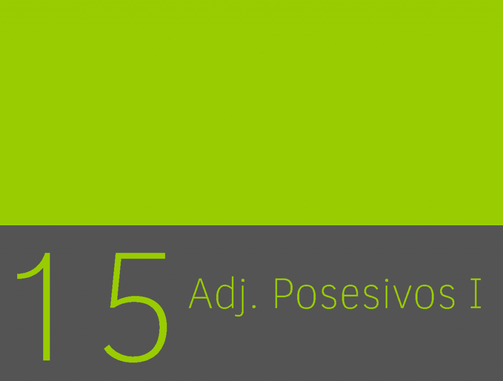 Clase 15 - Adjetivos posesivos I 1