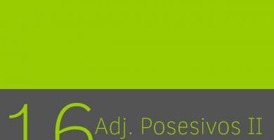Adjetivos posesivos plurales