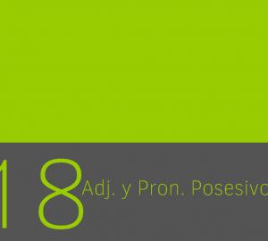Pronombres y adjetivos posesivos en ingles