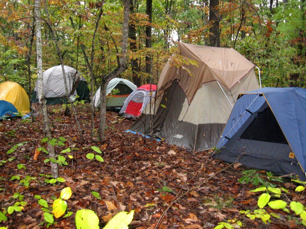 La innovación de los campamentos de inglés en Estados Unidos 1