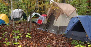 La innovación de los campamentos de inglés en Estados Unidos 9